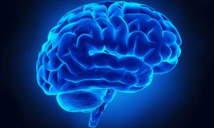 Steigerung der Kognivität durch Pflanzen – Schwungvoll das Gehirn auf Touren
